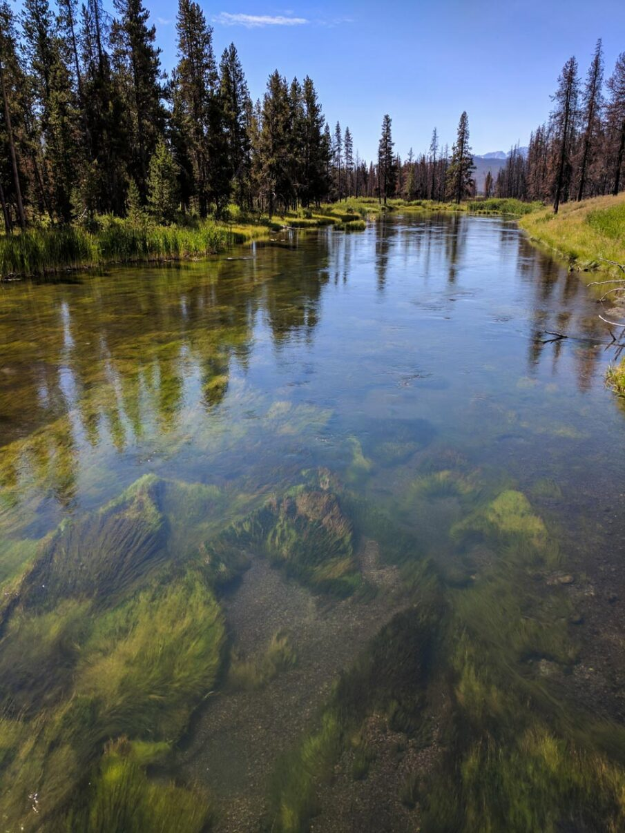 River at the trailhead to Huckleberry Hot Springs in Grand Teton National Park