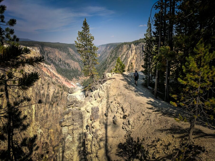 The trail from Artist Point to Point Sublime weaves along the edge of the Grand Canyon of the Yellowstone in Yellowstone National Park